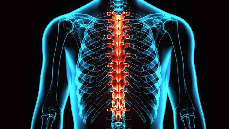 Uluslararası Spinal Kord (Omurilik) Farkındalık Günü